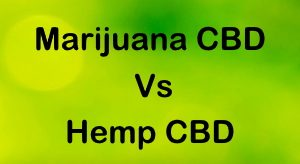 Marijuana vs Hemp CBD